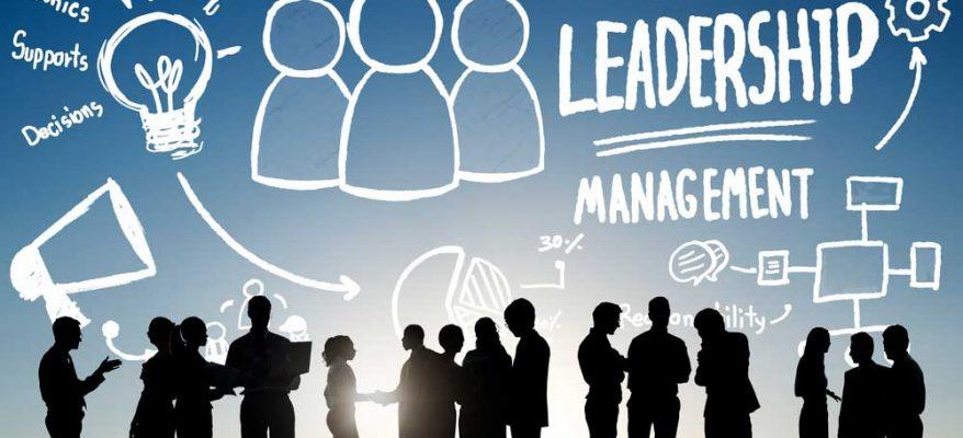Capacità di leadership